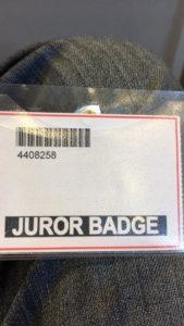 Jury Duty: Why only dumb people are jurors - Dana Martin Writing